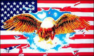 Fahne USA mit Adler 90 x 150 cm