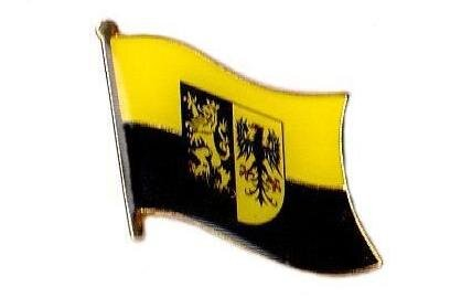Pin Vogtland Kreis 20 x 17 mm
