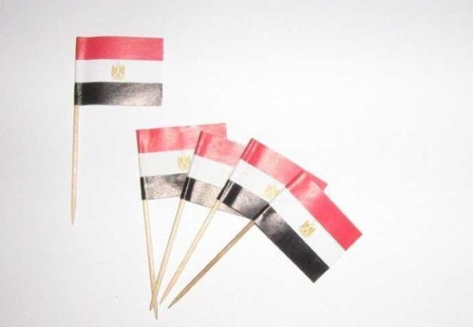 Flaggen Zahnstocher Ägypten VE=50