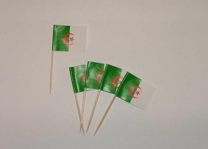 Flaggen Zahnstocher Algerien VE = 50