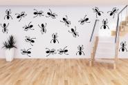 Wandtattoo Ameisen