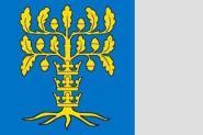 Flagge Blekinge 120 x 120 cm