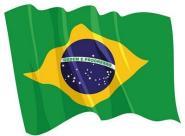 Aufkleber Flagge Brasilien wehend 8,5 x 6 cm