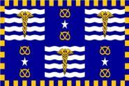 Fahne Brisbane 90 x 150 cm