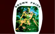 Fahne Brown Pride 90 x 150 cm