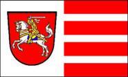 Fahne Dithmarschen 30 x 45 cm