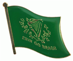 Pin Erin go Bragh 20 x 17 mm