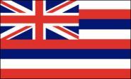 Fahne Hawaii 90 x 150 cm