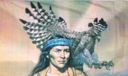 Fahne Indianer mit Adler 90 x 150 cm