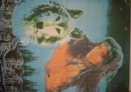 Fahne Indianerin mit Wolf 90 x 150 cm