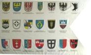 Fahne Landsmannschaften mit 20 Wappen 90 x 150 cm