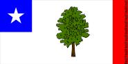 Flagge Mississippi 1861