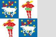Flagge Norrbotten 120 x 120 cm