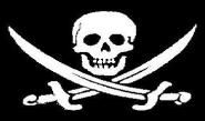 Fahne Pirat mit Säbel 60 x 90 cm