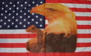 Fahne USA mit Großem Adler 90 x 150 cm