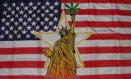 Fahne USA Liberty Marihuana 90 x 150 cm