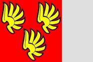 Flagge Wattenwil