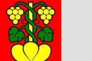 Flagge Wileroltigen