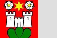 Flagge Zwieselberg